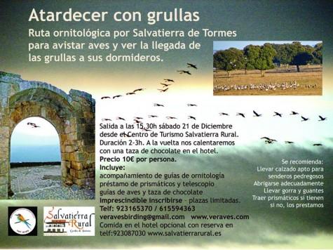 Ruta ornitológica en Salvatierra