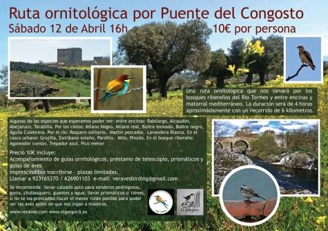 Ruta Ornitológica en Puente del Congosto