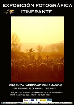 Exposición TRINO en Guijuelo