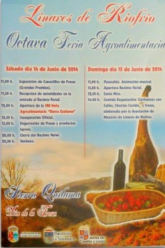 Feria en Linares