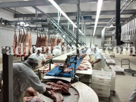 Trabajadores en un matadero de Guijuelo.