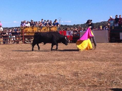 Clase práctica de los alumnos de la Escuela de Tauromáquia en Montejo. Foto archivo facebook Montejo.