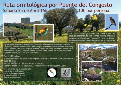 25 abril RUTA ORNITOLOGICA puente congosto