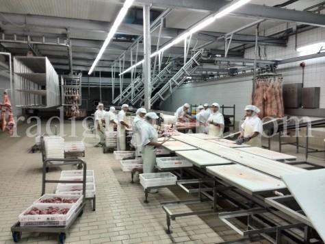 Trabajadores de una fábrica de Guijuelo.