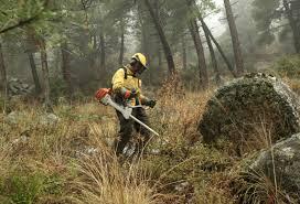 Prevención de incendios. Foto espormadrid.es