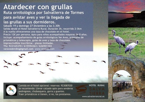 martes 27 dic VER AVES