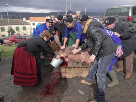 Matanza Tradicional de Ledrada Foto Ayto Ledrada.