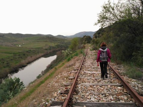 Ruta senderista. Foto Masqueandar