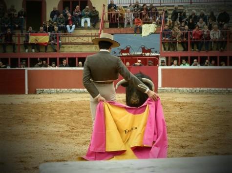 Fiestas en San MIguel. Foto San Miguel es más