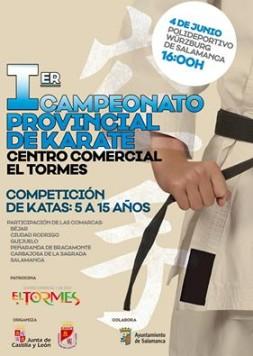 Campeonato provincial de kárate