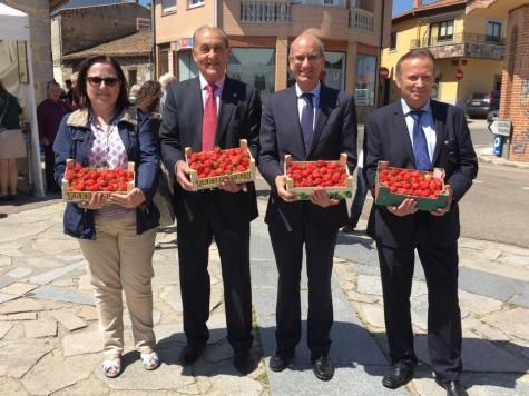 Feria de la Fresa en Linares. Foto Diputación de Salamanca.