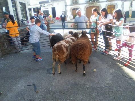 La tradición de la Motila en Los Santos. Foto Casilda Merino.