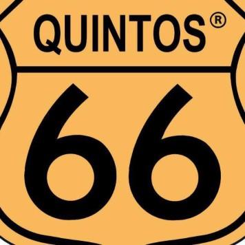 Quintos del 66