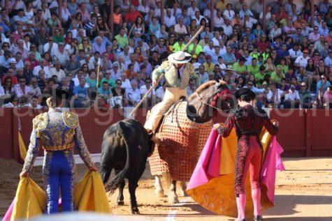 Un festejo taurino en Guijuelo.