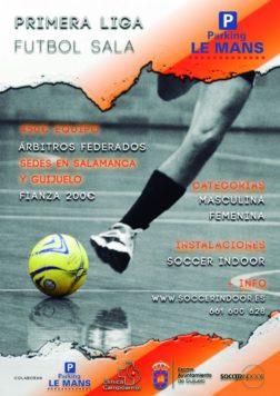 Liga de Fútbol Indoor