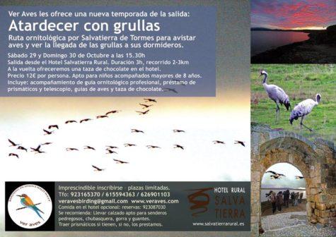 29-octub-aves-salvatierra