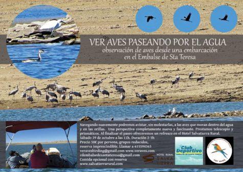 29-octubre-aves-en-barco