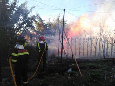 Actuación de los bomberos de Guijuelo en Cabezuela. Foto Bomberos Guijuelo.