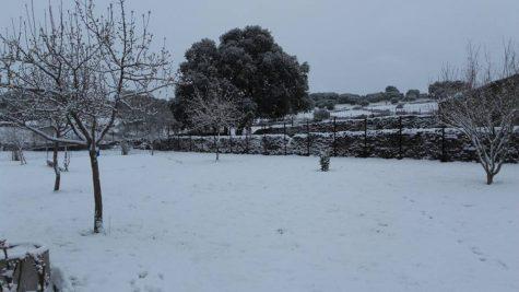 Nieve en Palacios. Foto Josefa Sánchez