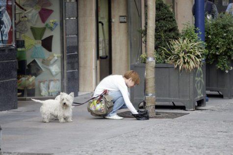 Una mujer recoge el excremento de su perro. Foto Tribuna de Toledo