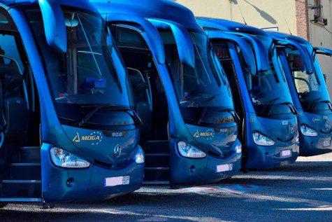 Autobuses. Foto Moga
