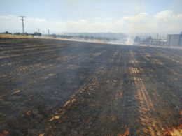Los bomberos tuvieron que actuar en Remansa.